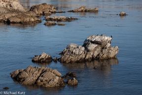 The Monterey Shore
