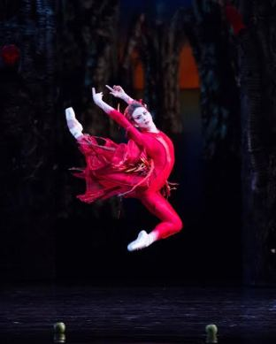 Isabella Boylston in Alexei Ratmansky's Firebird. Photo: Rosalie O'Connor.